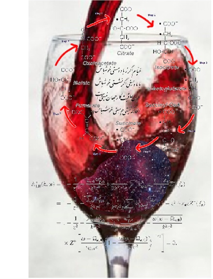 The intersections of wine and chemistry