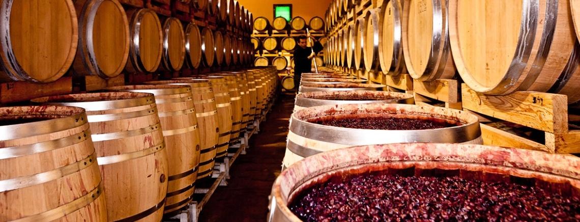 Wine ageing in oak barrels in contact with their grape skins at Tenuta Sant'Antonio
