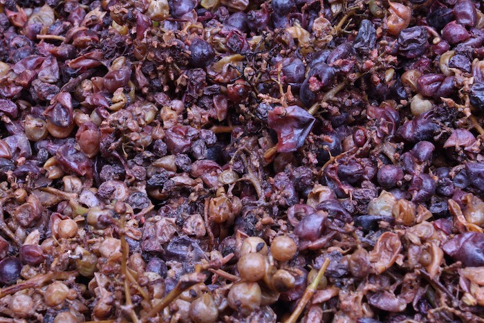 Dried grape skins used in the production of Amarone and Ripasso