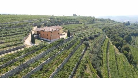 Speri Winery in Valpolicella Classico in the region of Veneto, Italy