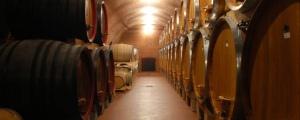 Ageing in oak barrels