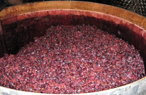 Fermentation with maceration of grape skins