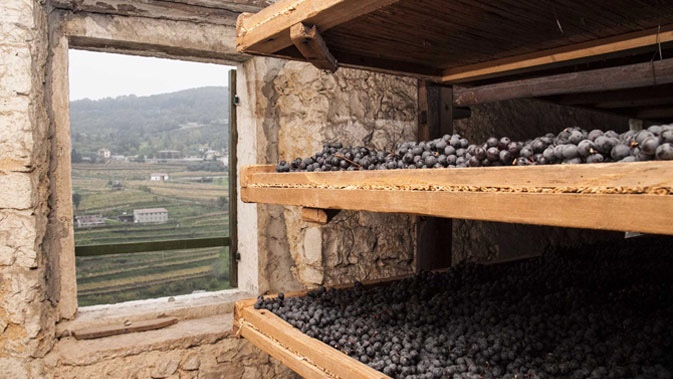 "A ""fruttai"" where grapes are being dried for the production of Amarone and Recioto"