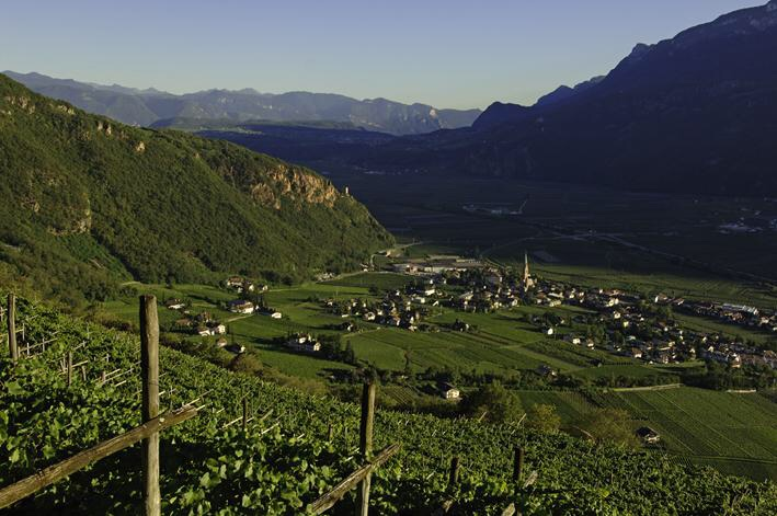The wine-making village of Cantina Terlan in South Tyrol, Alto Adige