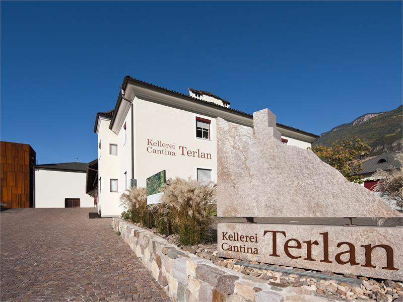 The facilities at Cantina Terlan