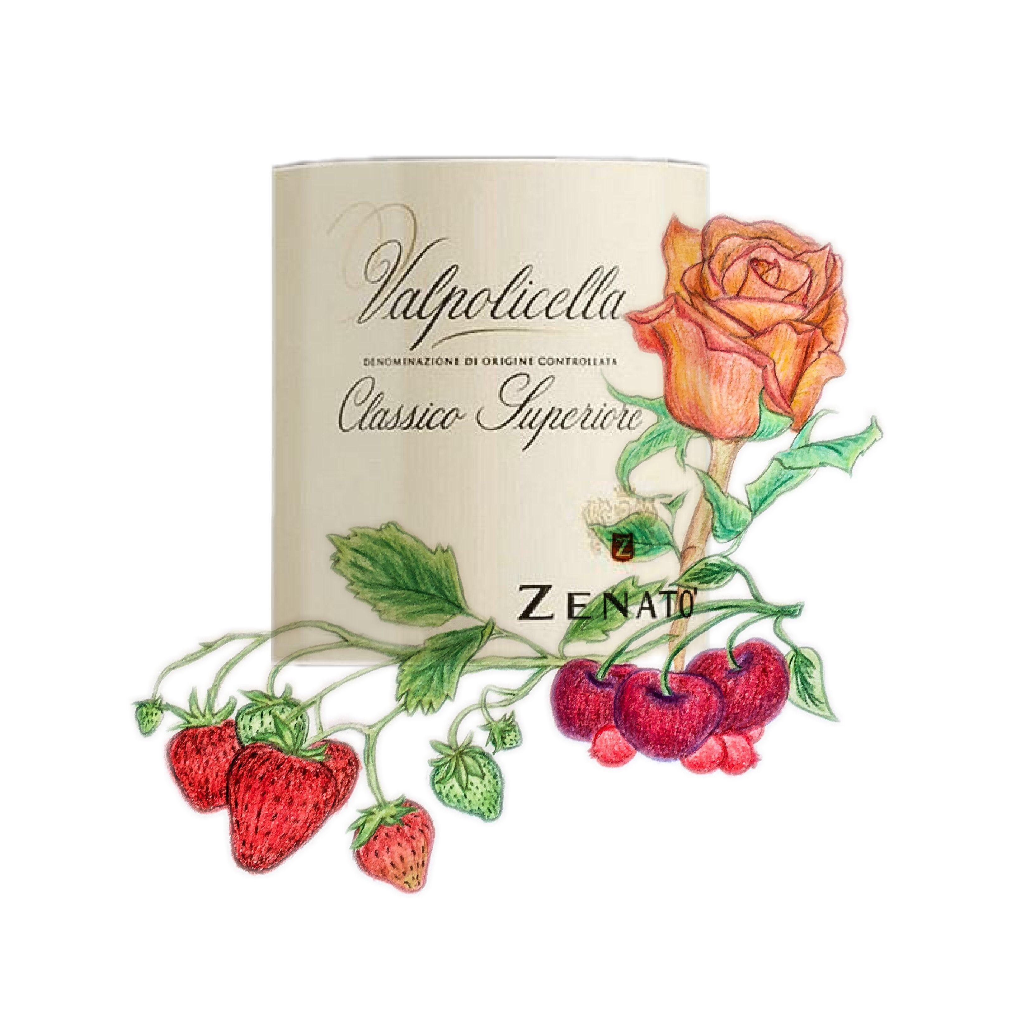 Cantina Zenato Valpolicella Classico 2015 illustration and wine label