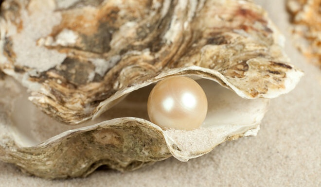 Pearl inside of an oyster