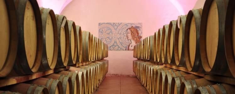The barrel room at Elena Walch