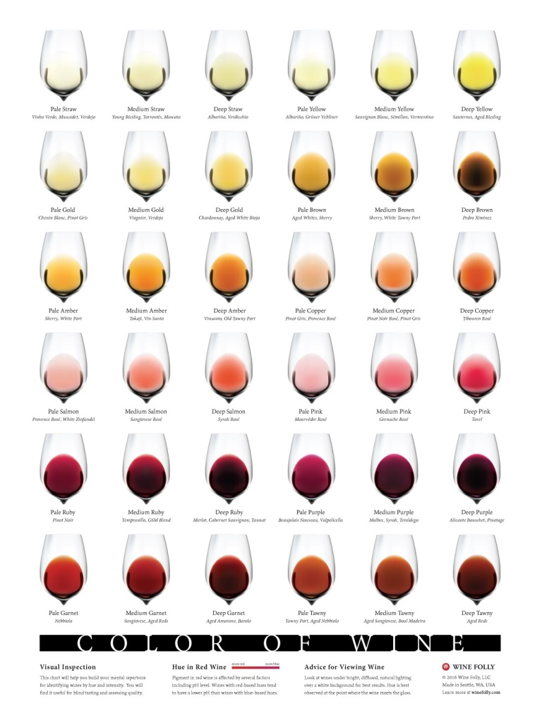 A colour chart of wine from winefolly